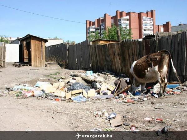 Orosz Kinai határváros