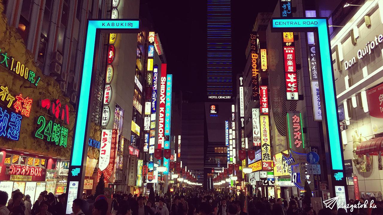Tokio varosnezes